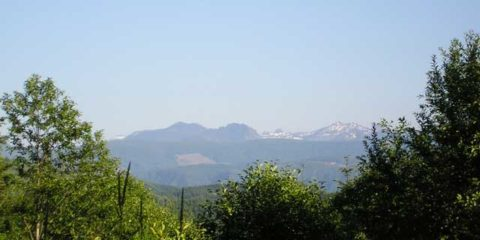 Viewing Mount St Helens