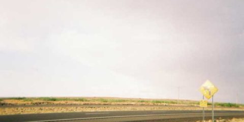 New Mexico High Plains