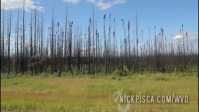 Burn Areas South of Fort McMurray