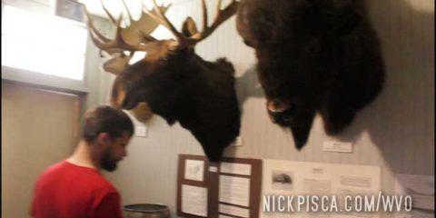 Dawson Creek Art Gallery and Museum