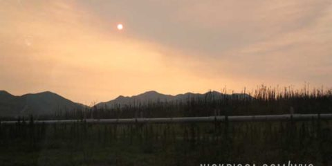 Forest Fires in Northern Alaska