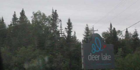 Deer Lake and Springdale Newfoundland